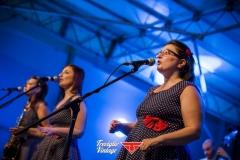 musica-artisti-concerti-treviglio-vintage-2016-008