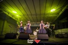 musica-artisti-concerti-treviglio-vintage-2016-010
