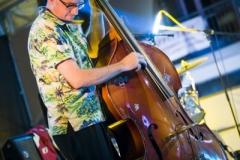 musica-artisti-concerti-treviglio-vintage-2016-021
