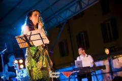 musica-artisti-concerti-treviglio-vintage-2016-023